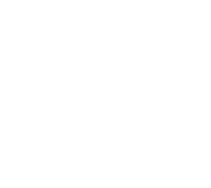 American Gun Trading Auctions